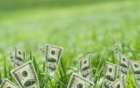 Как получить грант начинающему фермеру